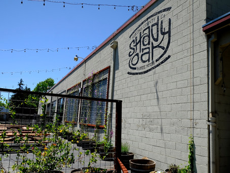 There's a New Tap Room Coming to Town…Shady Oak