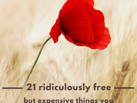 21 Ridiculously free but expensive things to be thankful for.