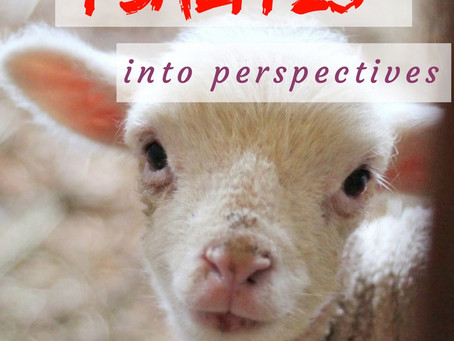 8 Bible verses that put Psalm 23 into perspectives
