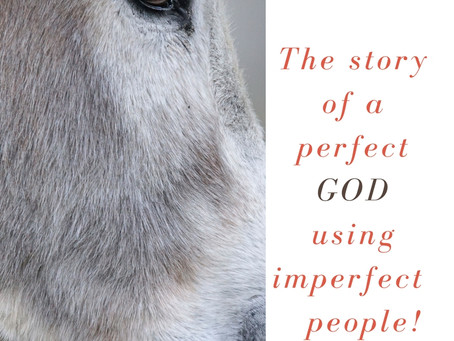 The Story of a Perfect God using Imperfect people.