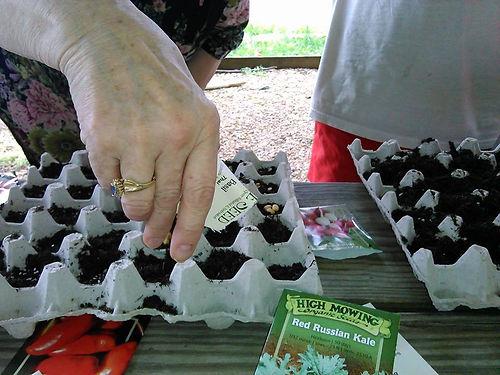 seed-planting.jpg