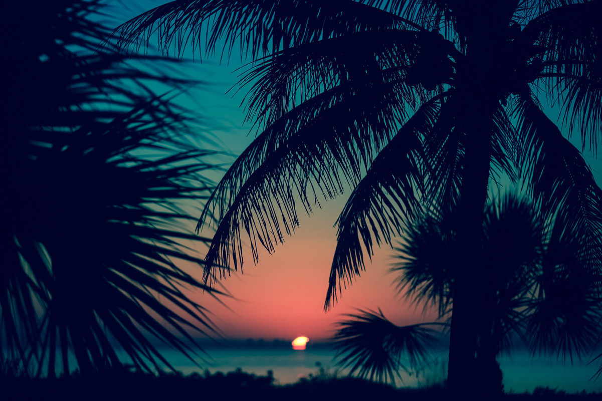 Sanibel morning view.jpg