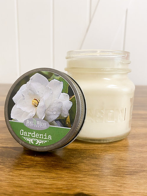 Summer Gardenia