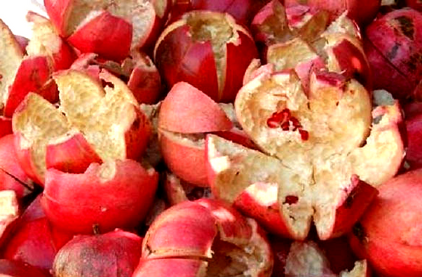 Pomegranate%2520rind_edited_edited.png