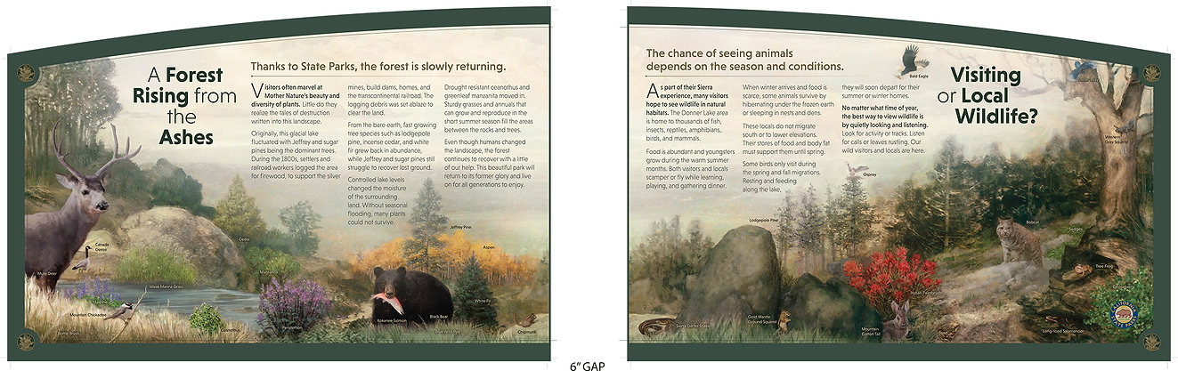 Flora Fauna Panel PRINT.jpg