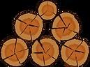 wood stove wood