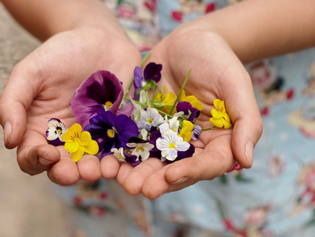 I'm growing Pansies and Violas!