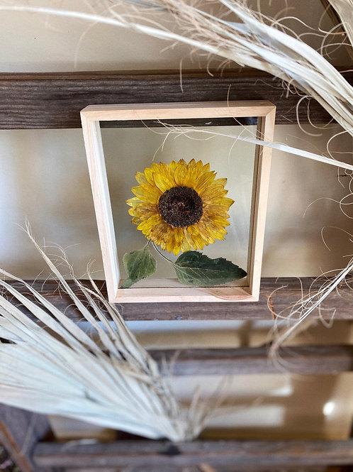FLOWER PLAY: Pressed Sunflower Frame