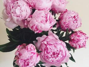 Flower Care: Peony