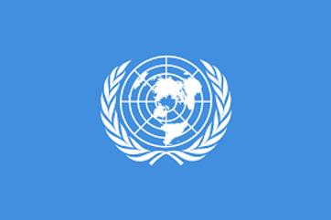 Case Laws on International organizations in International law BA llb