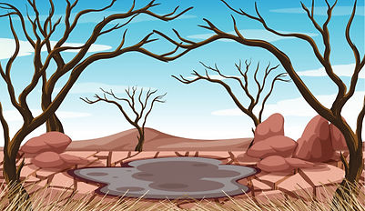 Water pollution, land pollution