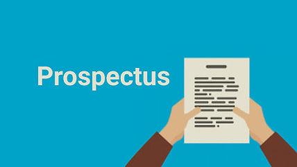 case briefs for prospectus in company law.