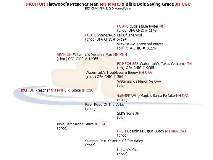 HRCH UH Preacher x Grace JH CGC.jpg