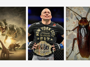 Dinosaurs, George St. Pierre and Cockroaches