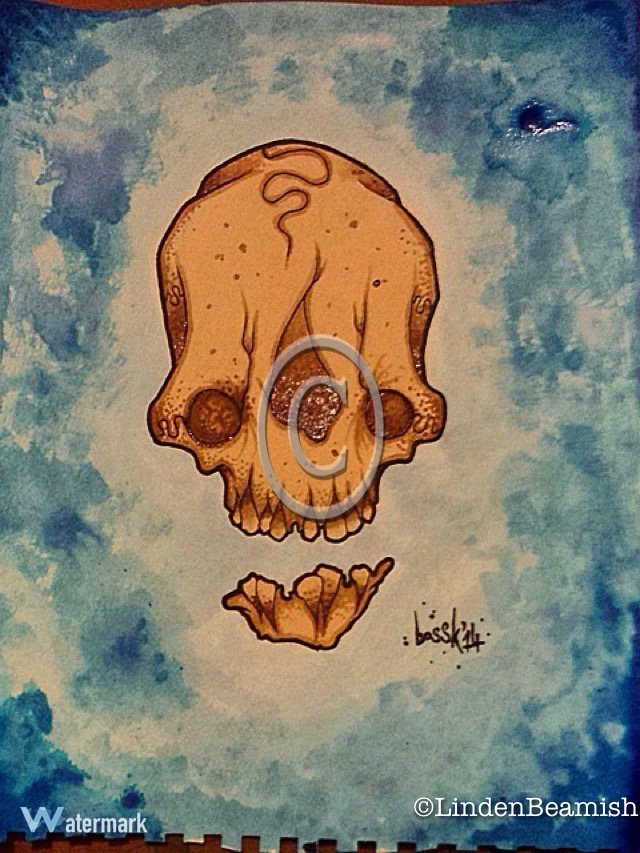 Skull in colour