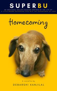 SuperBu: Homecoming