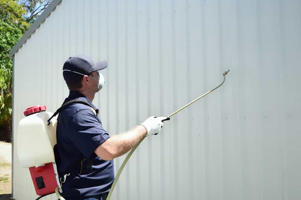 Pest-control-mackay-spraying-for-outdoor