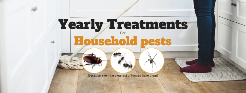 All Things Pest Control Mackay
