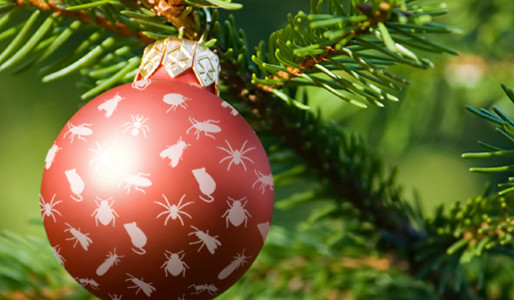 The Christmas Pest Infestation