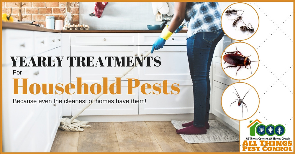 All Things Pest Control yearly treatments for household pests. Cockroaches, ants, silverfish & external spiders