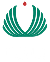 PHULA%20colores%202_edited.png