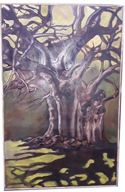 Muhsana Ali_Serie Le Baobab
