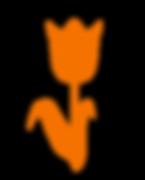 tulipano_c.png