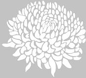crisantemo_b con sfondo.png