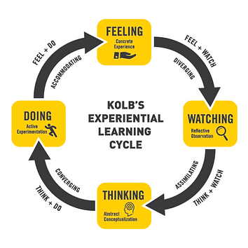 kolb-cycle.png