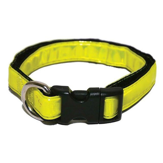 Small Hi-Visibility Collar