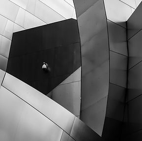 Black and white image of he Walt Disney Concert Hall in LA