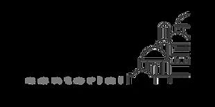 Savva logo copy.png