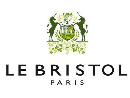 2015 - Blog Viktor de Bristol