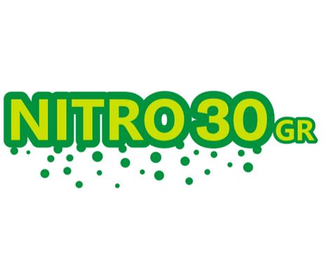 Logo N1.png