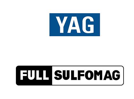 LOGO YAG1.png