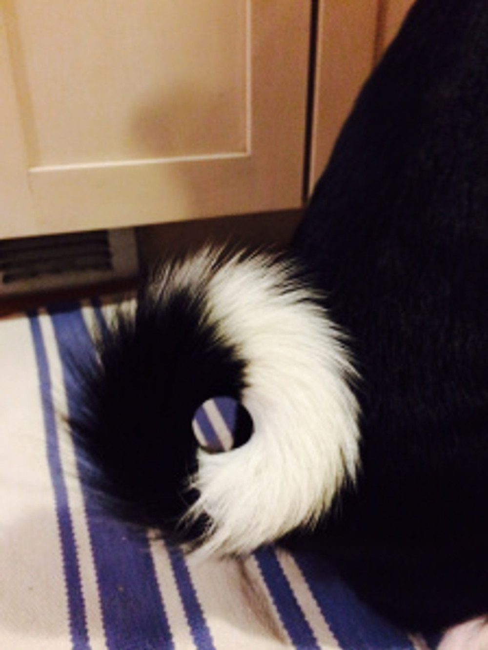 Storm's tail.