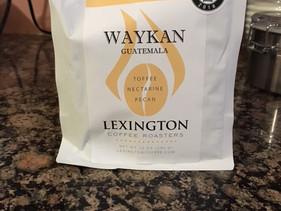 Waykan Review