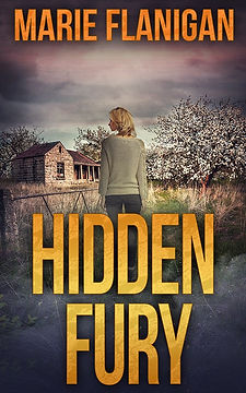 Hidden-Fury_500x800-Cover-Reveal-and-Pro