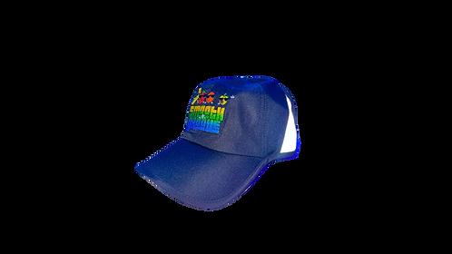 SNG DRI FIT HAT