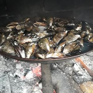 Villa PaulAna barbecue moules