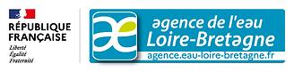 Logo-RFIAE-long200px.png