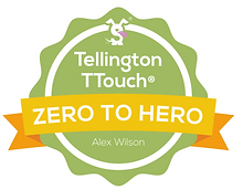 T-Touch%20Zero%20to%20Hero_edited.png