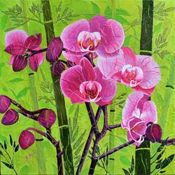 Orchidées à saveur exotique