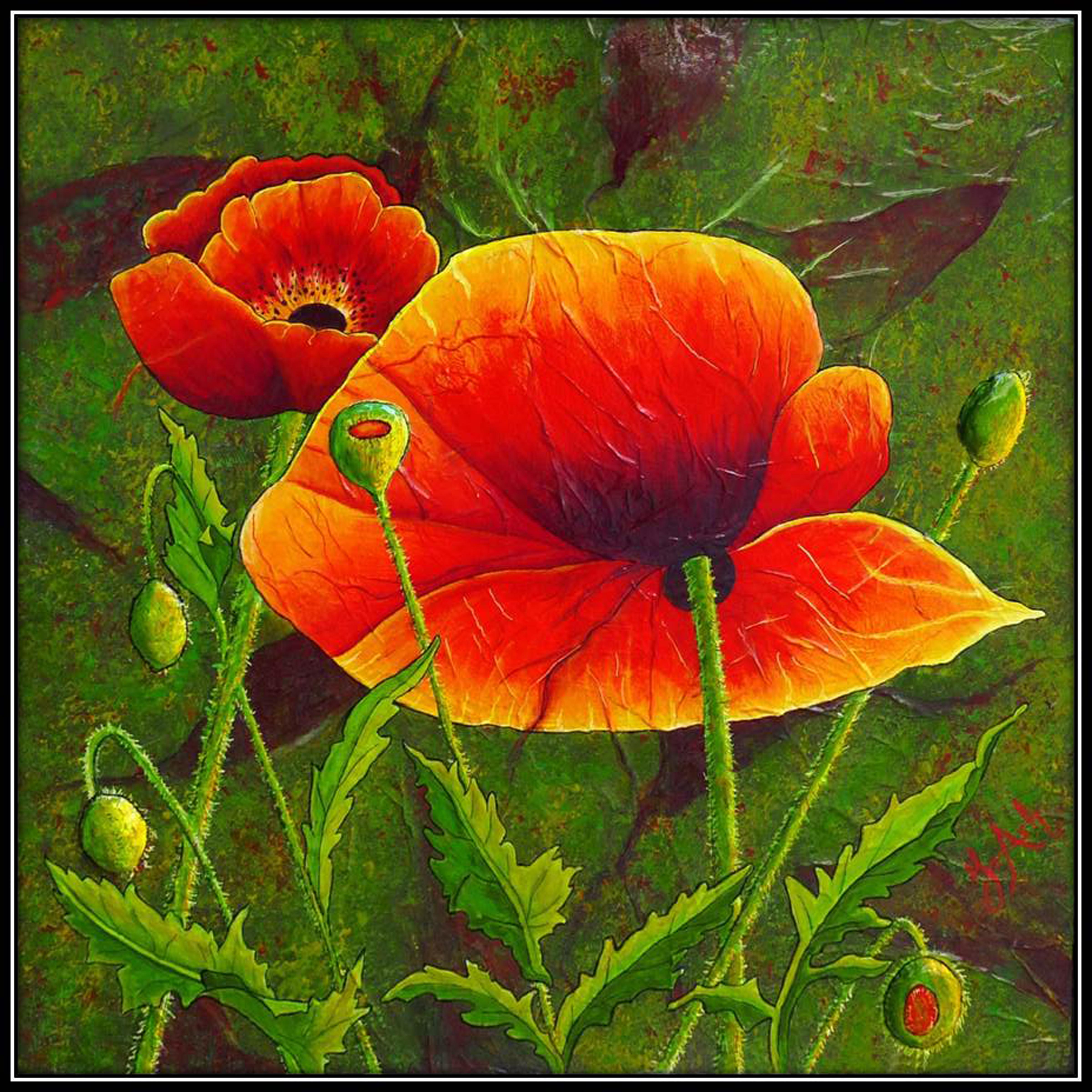 Fleur de pavot 4