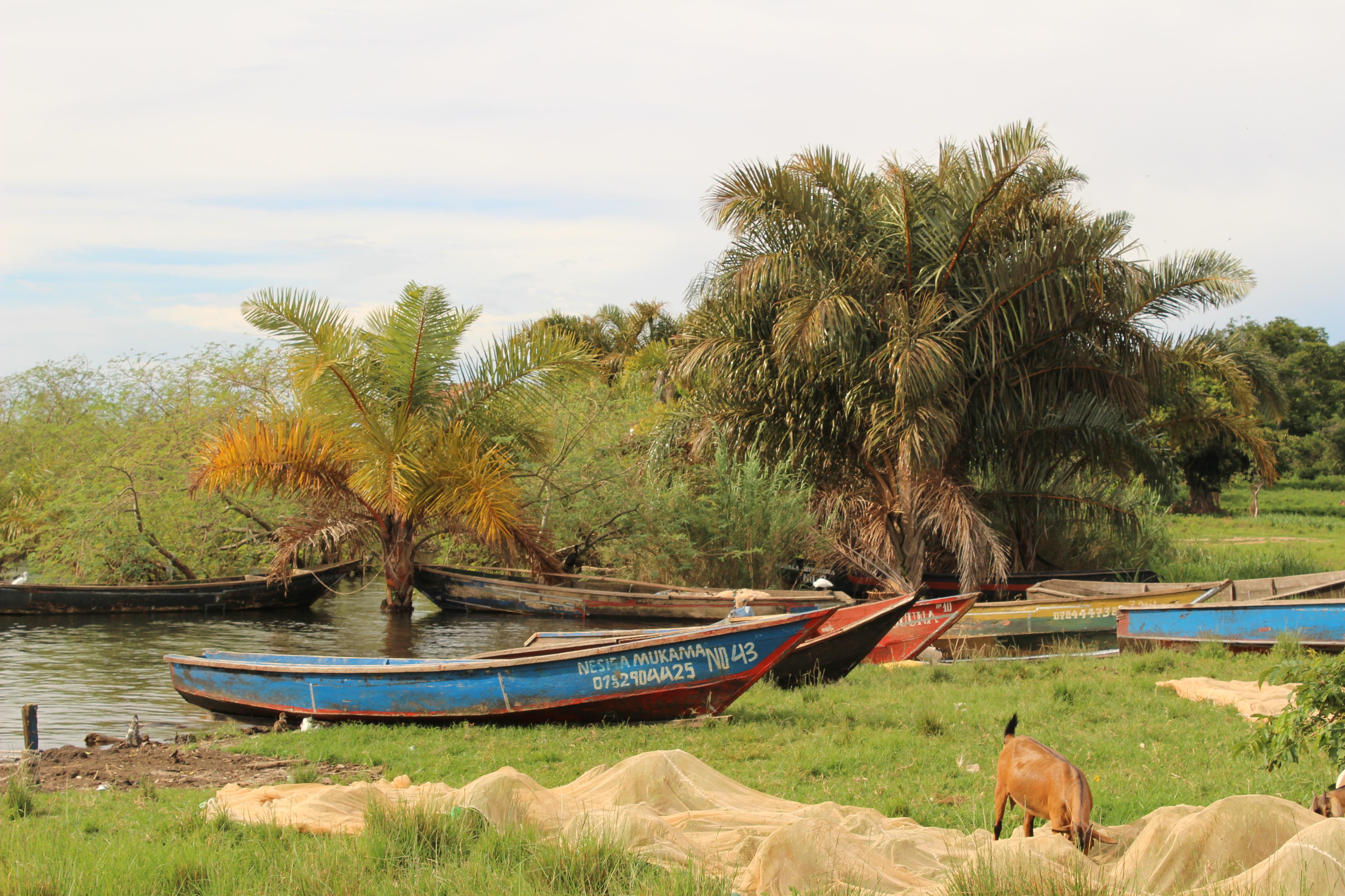 Banda Island Village