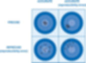 MSA Measurement Systems Analyses, GD&T Expert, CMM Programming, CMM Training, Zeiss Calypso, Mitutoyo MCOSMOS MiCAT, PCDMIS