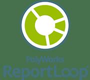 reportloop.png