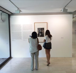 Exhibition Wall Text