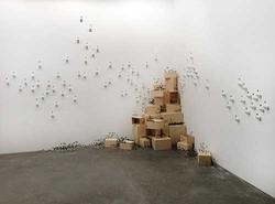 Mylyn Nguyen, 'Bombus' 2014, install
