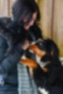 Pension canine de qualité suppérieure, éducation canine, garderie pour chien, planchers chauffants et installations sécuritaires, dresseur pour chien, maternelle chiot, comportement canin, centre canin, pension canine, spécialiste en comportement canin, pension, chien, chiot, éducation canine,Pension pour chien Laurentides / Garderie pour chien / Éducation canine / Comportement canin Laurentides / Cours d'obéissance chien / Maternelle chiot / Dresseur pour chien / Centre canin Laurentides / Éducateur Canin Laurentides / Spécialiste en comportement canin / Pension / Accessoires d'entraînement pour chien / Produits naturels pour chiens / Pension Canine Sainte-Adèle /Pension pour chien Laurentides / Garderie pour chien / Éducation canine / Comportement canin Laurentides / Cours d'obéissance chien / Maternelle chiot / Dresseur pour chien / Centre canin Laurentides / Éducateur Canin Laurentides / Spécialiste en comportement canin / Pension / Accessoires d'entraînement pour chien / Produits